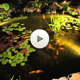 The Water Feature Lifestyle - Create a Nighttime Oasis